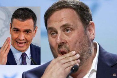 Los indultos a los golpistas agravan la caída del PSOE: Sánchez y su banda pierden 23 escaños