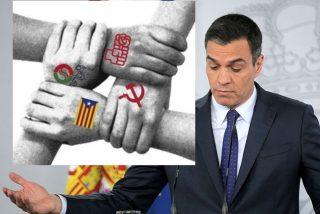 El PSOE de Sánchez entra en pánico y quiere ahora que voten 'niños' e inmigrantes