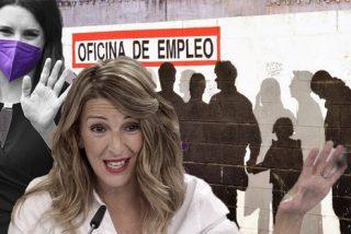 El Banco de España desvela el fracaso de la medida 'estrella' de Podemos: subir el SMI destruyó 180.000 empleos