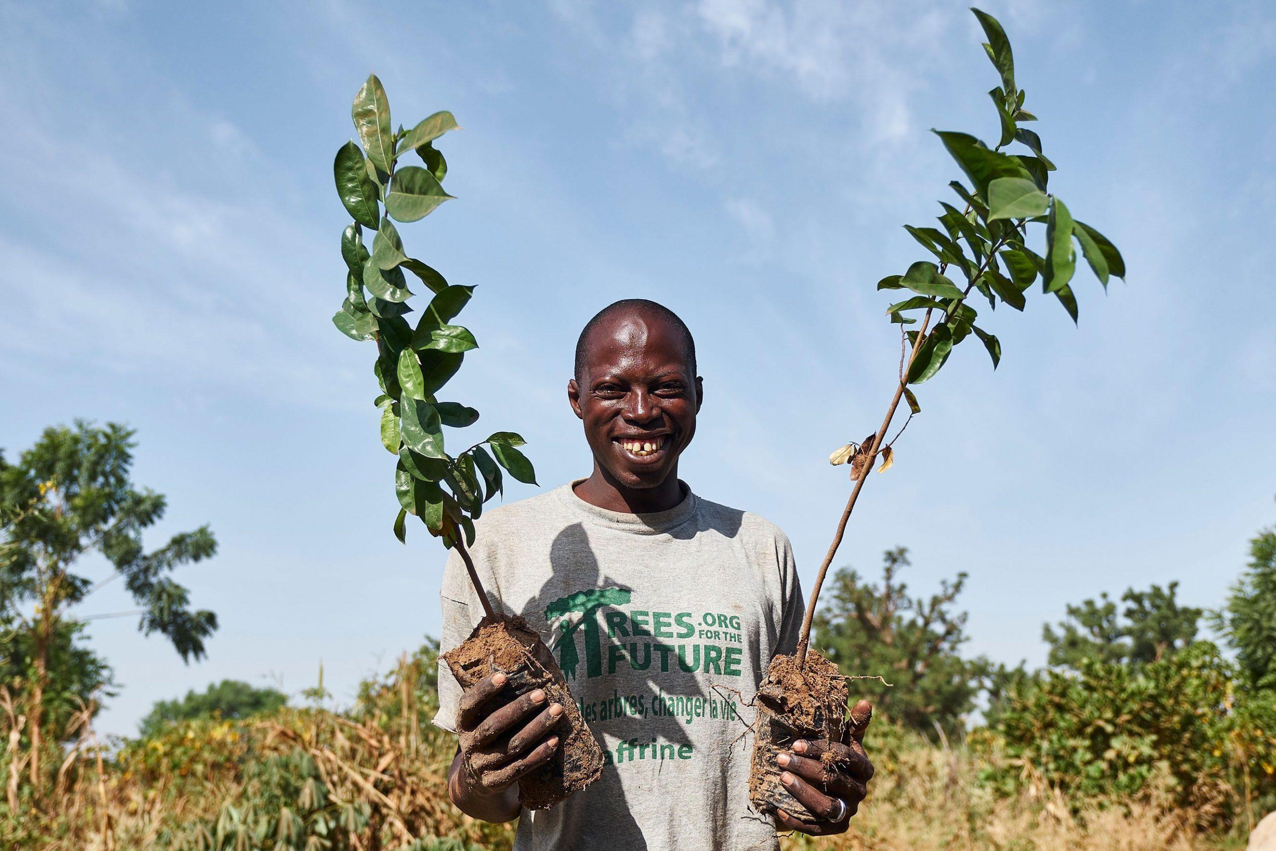Smoking® colabora en el objetivo de plantar 54 millones de árboles en el África Subsahariana