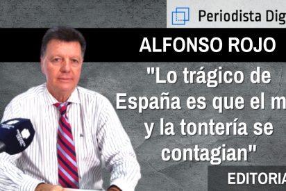 """Alfonso Rojo: """"Lo trágico de España es que el mal y la tontería se contagian"""""""