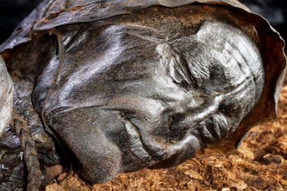La famosa momia, el 'hombre de Tollund', comió pescado antes de ser sacrificado
