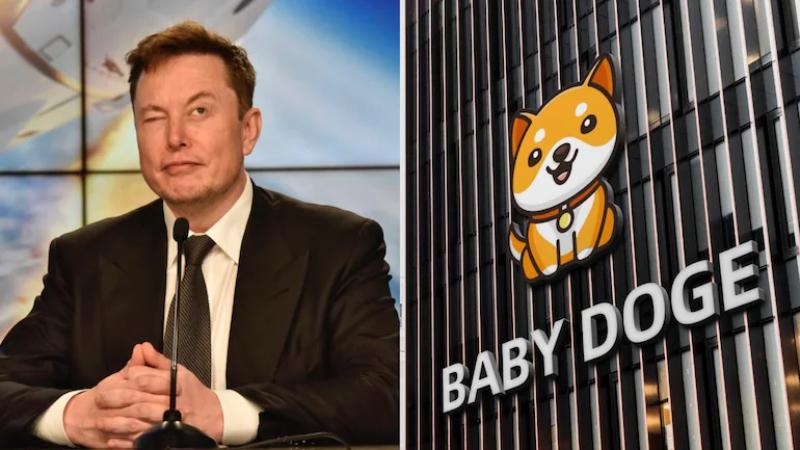 Criptomonedas: Baby Doge se dispara un 228 % en un día tras un tuit de Elon Musk
