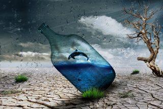 Beber agua embotellada afecta 1.400 veces más al ecosistema que consumirla del grifo
