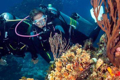 Cozumel: Meca del buceo mundial