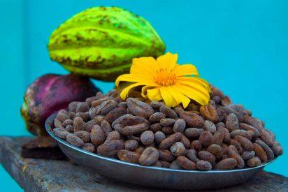 El cacao, una de las grandes joyas gastronómicas de Centroamérica