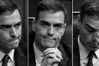 Al nuevo Gobierno de Pedro Sánchez… todo le son pulgas: los dos terribles palos en 24 horas