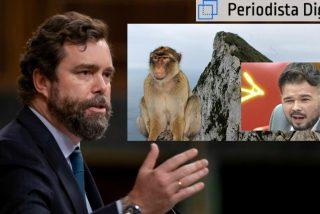 Espinosa de los Monteros (VOX) sacude a Rufián (ERC) el zasca del mono de Gibraltar