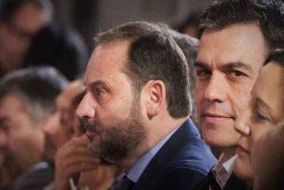 Alarma en Moncloa: le estallan a Sánchez las millonarias adjudicaciones públicas al hijo de Ábalos
