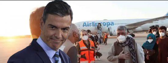 Nuevo ridículo de Sánchez: le cuelan afganos 'fake' en la evacuación de Afganistán