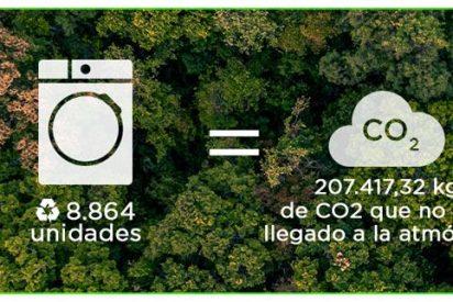 EVVO, una marca respetuosa con el medio ambiente