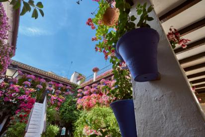 Los Patios, la fiesta de Córdoba más buscada por los usuarios en Google según Semrush
