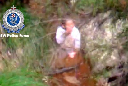 Rescatan a un niño autista de tres años que permaneció perdido en el bosque durante cuatro días
