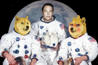 Criptomonedas: un clon del Dogecoin se dispara un 1000 % en 24 horas