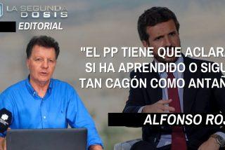 """Alfonso Rojo: """"El PP tiene que aclarar si ha aprendido o sigue tan cagón como antaño"""""""
