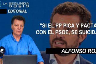 """Alfonso Rojo: """"Si el PP pica y pacta con el PSOE, se suicida"""""""