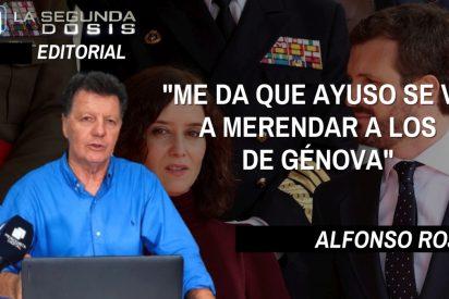 """Alfonso Rojo: """"Me da que Ayuso se va a merendar a los chiquilicuatres de Génova"""""""
