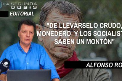 """Alfonso Rojo: """"De llevárselo crudo, Monedero y los socialistas saben un montón"""""""