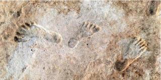 Encuentran huellas humanas en Nuevo México de hace 23.000 años