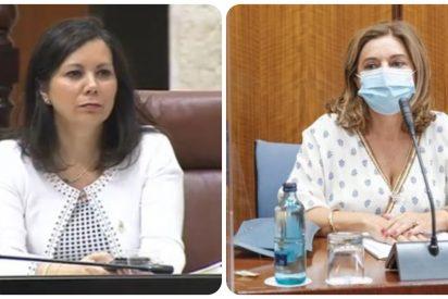 Ángela Mulas (VOX) acalambra en dos soberbios minutos a la enchufada mujer del socialista Juan Espadas