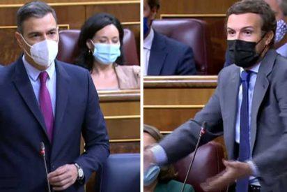 """Casado, a Sánchez: """"Usted ha llegado al extremo de que hay que darle las gracias por vacunar a los que no le votan"""""""