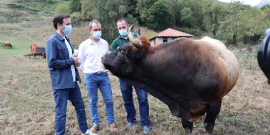 Los tuiteros asan a zascas a Alberto Garzón por visitar una finca ganadera semanas después de censurar el consumo de carne