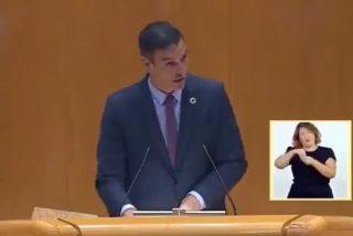 El hijo de un asesinado por Parot recuerda el vídeo que perseguirá a Sánchez de por vida: así dio el pésame por un etarra