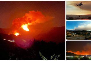 Un pavoroso incendio en Sierra Bermeja (Málaga) obliga al desalojo de medio millar de vecinos y al corte de la autopista