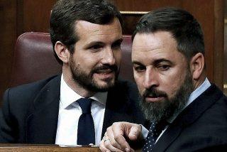 Encuesta: Más del 75% del electorado del PP reclama a Casado pactar con VOX para desalojar a Sánchez de La Moncloa
