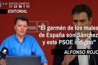 """Alfonso Rojo: """"El germen de los males de España son Sánchez y este PSOE indigno"""""""