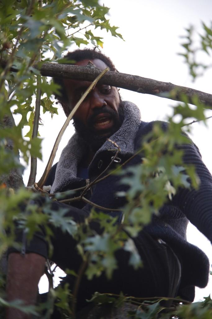 La policía de Nueva York lleva tres días negociando con este tipo para que se baje de un árbol